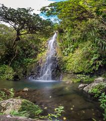 Au pied de mon arbre... (JP38photos) Tags: cascade bassin réunion lareunion eau nature randonnée iledelareunion hike fall reunionis gx8 heaven panasonicdmcgx8 paradis paradise water waterfall