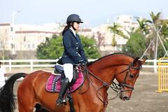 IMG_1054M 臺中市潭子區 旱溪西路 汗王馬術指導中心 馬術障礙賽 (陳炯垣) Tags: sport outdoors horse horsemanship taiwan 台灣 潭子 馬術