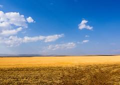 DryFields.jpg (Klaus Ressmann) Tags: klaus ressmann olympus omd system autumn landscape montana nature usa clouds design fields flcnat minimal klausressmann olympusomdsystem