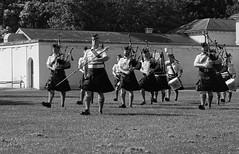 02 - Hamilton - Nikon F5 - Ilford HP5+ - 023 (Alex Luyckx) Tags: hamilton ontario canada dundurncastle dundurn nationalhistoricsite canadaday militarytattoo canadianarmedforces canadianarmy royalhamiltonlightinfantry argyllsutherlandhighlandersofcanada royalhamiltonlightinfantrywr13thbattalionceremonialguard music militarymusic performance band militaryband regimentalband fenianraids battleofridgeway history canadianhistory militaryhistory nikon nikonf5 f5 slr 135 35mm afnikkor28105mm13545d harmantechnologies ilfordphoto iford ilfordhp5 hp5 asa400 kodak kodakhc110 hc110 dilutionb 131 nikoncoolscanved adobephotoshopcc bw blackwhite believeinfilm filmisalive filmisnotdead
