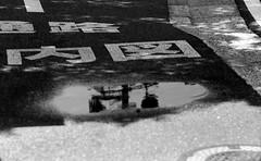 図版 (a figure) (Dinasty_Oomae) Tags: leicaiiia leica ライカiiia ライカ 白黒写真 白黒 monochrome blackandwhite blackwhite bw outdoor 千葉県 千葉 chiba 習志野市 narashino 習志野 水たまり ponding 反射 reflection