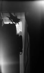 飛行場 (aerodrome) (Dinasty_Oomae) Tags: leicaiiia leica ライカiiia ライカ 白黒写真 白黒 monochrome blackandwhite blackwhite bw 千葉県 千葉 chiba 船橋市 funabashi 船橋 窓 window