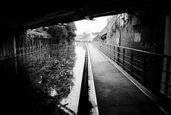 Limehouse Cut (a.pierre4840) Tags: olympus om3 zuiko 24mm f28 35mmfilm ilford ilfordhp5 hp5 hp5plus bw blackandwhite noiretblanc canal london england path urban decay reflections