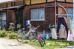 BL House (m-louis) Tags: 32mm j5 nikon1 bicycle garden house japan kaizuka laundry osaka plant 大阪 日本 貝塚 explore