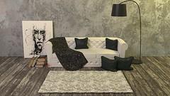 Apporter une nouvelle allure à votre salon selon votre façon (JuliePiliti) Tags: paris salon tapis
