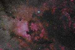 Cygnus (bencbright) Tags: cygnus northamerica north america nebula nebulae emissionnebula pelican deneb star longexposure night astrophoto astrophotography ioptron skytracker pro fujifilm fuji samyang samyang135mm 135mm widefield