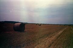 (Alexandru Paraschiv) Tags: yashica t4 konica 400 expired tetenal manual 35mm analog film