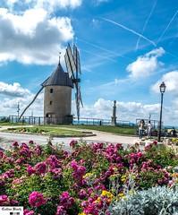 Moulin de Durban (https://pays-basque.coline-buch.fr/) Tags: 32 assosciation colinebuch durban france gascogne gers sudouest fête moulin vent fleurs