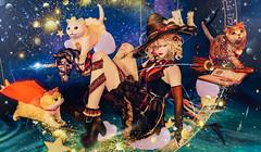 Insomnia Angel和kotte的水晶心  魔法少女和猫 (imp朣) Tags: secondlife second life crystal heart magic girl cute cat star insomnia angel