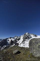 _DSC1982 (achrntatrps) Tags: trient valais champex alpes alps alpen montagnes mountains berge gebirge wallis randonnée suisse montagne bergen photographe photographer alexandredellolivo dellolivo achrntatrps achrnt atrps radon200226 radon d850 été nikon montanas glacier gletscher neige snow schnee orny nikkor clubalpinsuisse cas