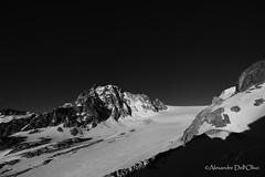 _DSC1976 (achrntatrps) Tags: trient valais champex alpes alps alpen montagnes mountains berge gebirge wallis randonnée suisse montagne bergen photographe photographer alexandredellolivo dellolivo achrntatrps achrnt atrps radon200226 radon d850 été nikon montanas glacier gletscher neige snow schnee orny nikkor clubalpinsuisse cas
