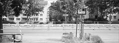 8 Zaunsfelder druff (fluffisch) Tags: fluffisch darmstadt bessungen hasselblad xpan panorama 45mmf40 rangefinder messsucher analog film ilford fp4