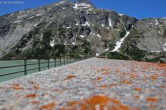 IMG_0006 (u.wittwer) Tags: grimsel switzerland suisse schweiz heimat berge alpen natur staumauer