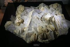 Barite on Fluorite, Wieden (Chickenhawk72) Tags: museum for minerals mathematics schulstrase 77709 oberwolfach mima germany black forest grube clara mine mineral crystal schwarzwald wolfach badenwürttemberg
