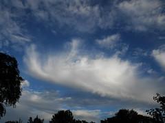 Large Feather cloud (Nevrimski) Tags: feather cloud cirrus