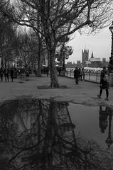 The Eye Reflection (daveseargeant) Tags: london eye wheel ferris thames street reflection city monochrome black white blackwhite leica x typ 113