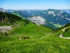 Auf das Mägisserehore 2347m (Martinus VI) Tags: diemtigtal oey diemtigen juni june juin y190628 bern berne berna berner bernese kanton de canton oberland schweiz suisse suiza switzerland svizzera swiss martinus6 martinus6xy martinus martinusvi hillside keymahi0060