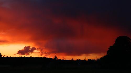 Sunset Smarde 03.07.2019 06 ©  Егор Журавлёв