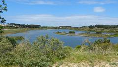 Nationaal Park Zuid-Kennemerland - Vogelmeer (joeke pieters) Tags: 1470635 panasonicdmcfz150 nationaalpark zuidkennemerland vogelmeer noordholland nederland netherlands holland duinlandschap duinen dunes landschap landscape landschaft paysage nswandeling santpoortnoordoverveen