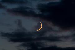 small crescent moon vs. clouds / @ 300 mm / 2019-07-05 (astrofreak81) Tags: explore smallcrescentmoon small crescentmoon moon luna mond planet stars tree light night sky dark konjunktion konstellation dresden 20190705 sylviomüller sylvio müller astrofreak81