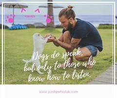Dogs speak 1 (silvanagjergji) Tags: