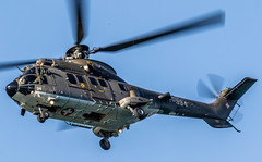ZurichCity: SwissAirForce Eurocopter TH98 Cougar (AS-532UL) T-334