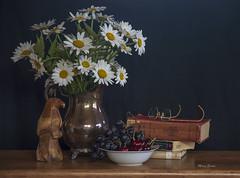 Hidden Knowledge (mevans4272) Tags: life still books eagle grapes cherries flowers glasses vintage