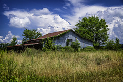 Martin County (N.C.) '19 (R24KBerg Photos) Tags: barn landscape rural canon 2019 northcarolina easternnorthcarolina nc williamstonnc farm cloudy south summer