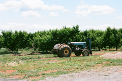 Chiles orchard (davekrovetz) Tags: orchard trees tractor farms virginia nikon nikonfe kodak ektar countryside farming
