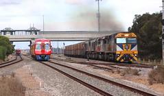 Passenger & Freight (Teutonic01) Tags: 5mp9 cfcl cf4403 sctlogistics sct001 csr011 csr008 mawsonlakes southaustralia freight railway railcar adelaidemetro locomotive