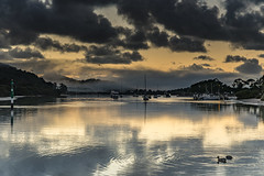 Rain Clouds, Reflections and Bay Waterscape (Merrillie) Tags: daybreak woywoy sunrise nature dawn reflections boats newsouthwales clouds earlymorning nsw brisbanewater bay morning australia coastal landscape sky waterscape waterfront centralcoast water outdoors