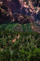 Kolob Canyons (alexJladd) Tags: canyon kolob utah national park nature landscape telephoto trees scenery