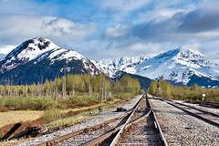 Alaska Railroad (jmguay1) Tags: alaska railroad chemindefer montagne mountain perspective neige snow arbres tree nuages clouds sky ciel turnagainarm track voieferrée snowcap sommetsenneigés