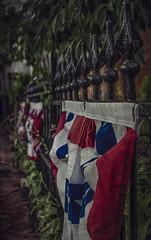 Patriotism (Paul B0udreau) Tags: hff columbus ohio