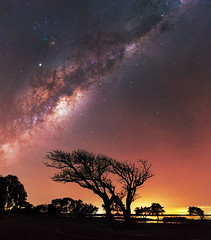 Milky Way rising above Herron Point, Western Australia (inefekt69) Tags: herron point collins pool mandurah water panorama stitched mosaic msice milky way cosmology southern hemisphere cosmos western australia dslr long exposure rural night photography nikon stars astronomy space galaxy astrophotography outdoor core great rift ancient sky 35mm d5500 landscape tree silhouette airglow tracked ioptron skytracker