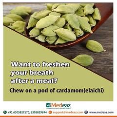 Want to freshen your breath after a meal (deo.sunanda) Tags: cardamom elaichi chew chewing meal breath breathing bite fresh freshen pod healthtips medeaz