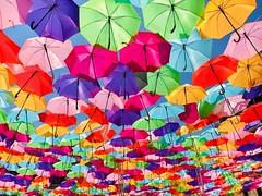 Flottaison saisonnière. (Pierre-Louis K.) Tags: installation art jaune violet vert orange rose couleurs bleu ciel fraîcheur ombre soleil parapluie
