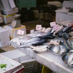 Fresh Fish (RunnyInHongKong) Tags: hollywoodroad nikoncoolscan9000 fujipro160c central hasselblad500cm 6x6 hongkong carlzeiss80mmf28 film mediumformat square negativelabpro vuescan
