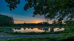 Sonnaufgang am Karpfenweiher in Dechsendorf 0563 (Peter Goll thx for +13.000.000 views) Tags: erlangen z6 nikon lake dechsendorf nature weiher spiegelung sonnenaufgang reflection nikonz6 2019 natur sunrise bayern deutschland
