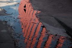 //🐦// (jhnmccrmck) Tags: melbourne victoria xt1 xf1855mm fujifilm fujifilmxt1 classicchrome melbourneinternationalgateway pigeon bird silhouette reflections explore iminexplore