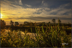 A Left Handed Sunrise. (Picture post.) Tags: landscape nature green sunrise clouds water reflections paysage trees arbre eau summertime riverbank