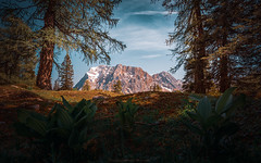 The window of nature (agialopoulos) Tags: mountain mountains landscape peaks austria alps forest woodland colourful colors summer