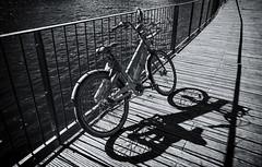 Bord de Saône (JLM62380) Tags: bord rive edge lyon france river bicycle shadow noiretblanc blackandwhite monochrome planches ombre transportation saône