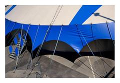 61 [titre manège pour WW] (Armin Fuchs) Tags: arminfuchs lavillelaplusdangereuse würzburg africafestival tent blue fence anonymousvisitor thomaslistl wolfiwolf jazzinbaggies