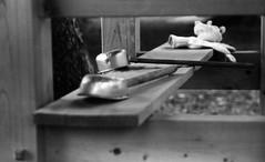 みずのそなへ (Dinasty_Oomae) Tags: leicaiiia leica ライカiiia ライカ 白黒写真 白黒 monochrome blackandwhite blackwhite bw outdoor 千葉県 千葉 市川市 市川 chiba ichikawa 神社 shrine 手水舎 柄杓 dipper