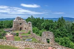 Burg Runding (tom22_allgaeu) Tags: bayrischerwald deutschland europa runding germany d7200 bayern bavaria bavarianforest burg castle ruine nikon architektur green tamron mittelalter