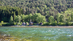 Kinso River (2000stargazer) Tags: kinso kinsarvik ullensvang hardanger norway river salmonriver waterscape landscape nature green forest summer canon getty gettyimages