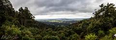 Springfield lookout, Tasmania 2019 (Matt Lockhart | Photography) Tags: canon canonaustralia lookout cloudydays clouds bushland photography