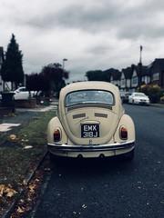 vw beetle (silvertony45) Tags: vw beetle vwbeetle vintage