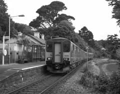 Lelant (DH73.) Tags: lelan cornwall stives branch line railway sprinter class 150 150202 black white film 6x7 rangefinder mamiya press ilford delta 400 ilfosol